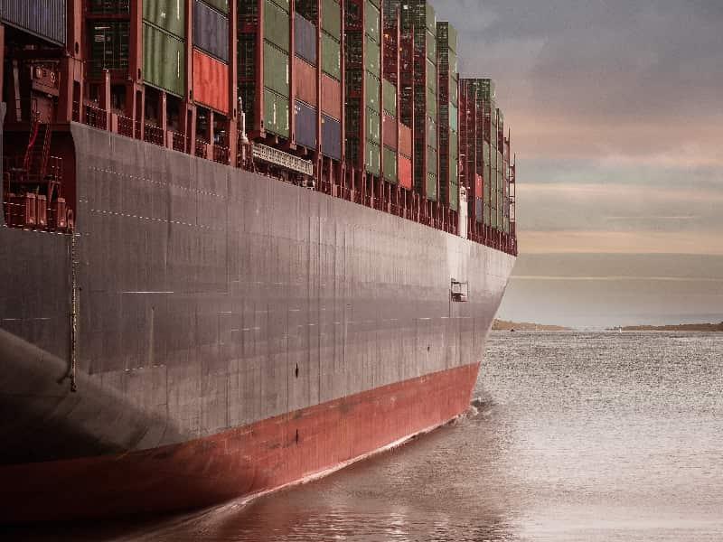 cargo survey